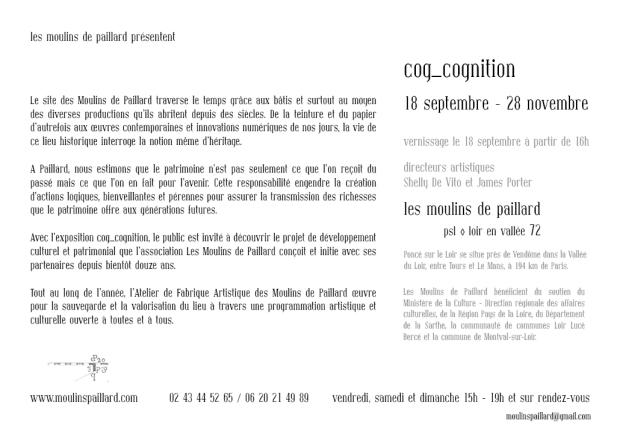 webcog_cognition verso